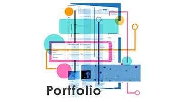 ITONICS Portfolio Software Illustration